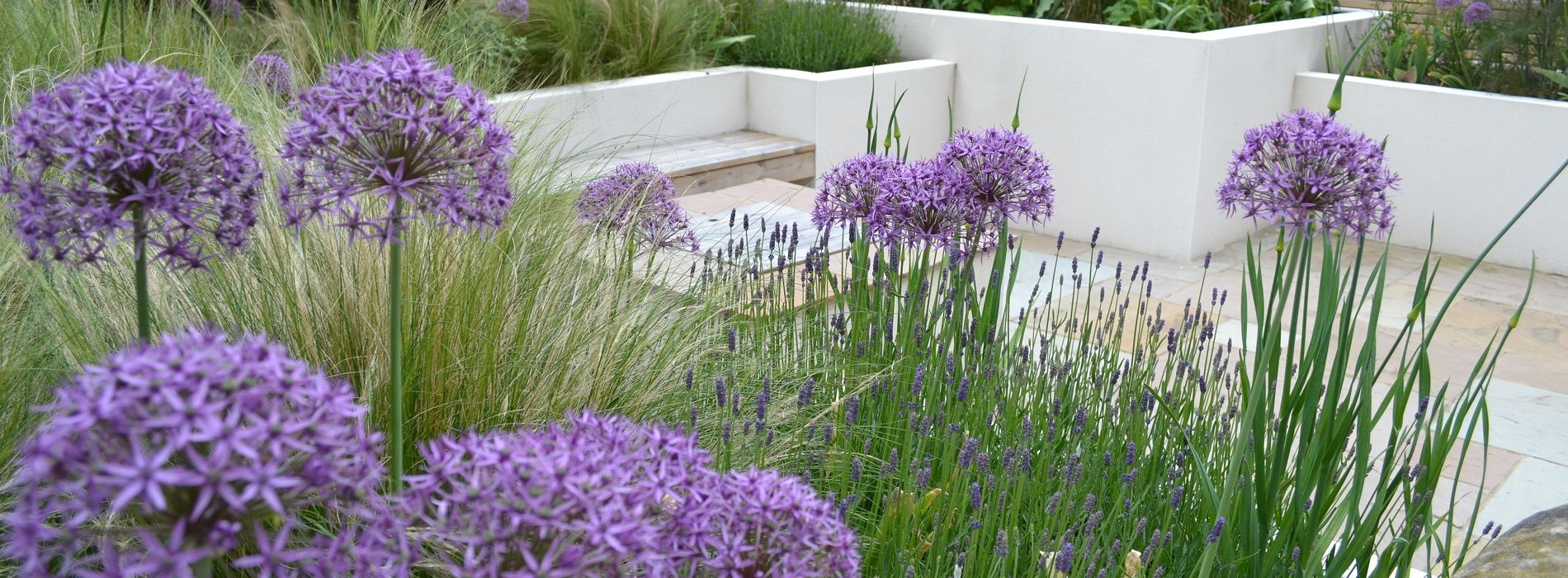 Tracy Foster Garden Design