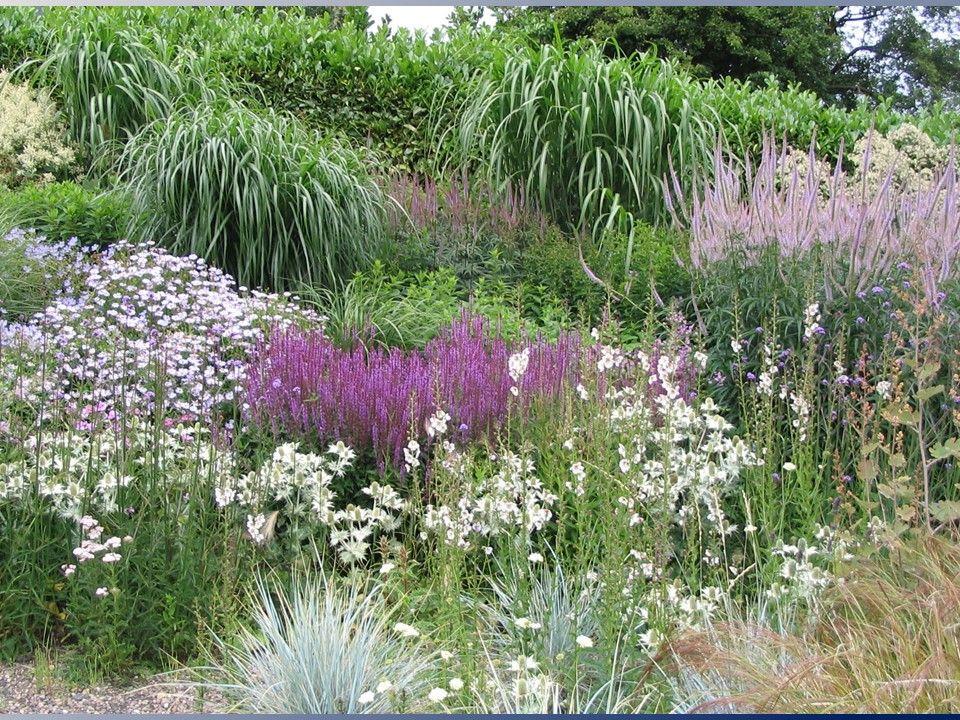 Seven Principles of Garden Design